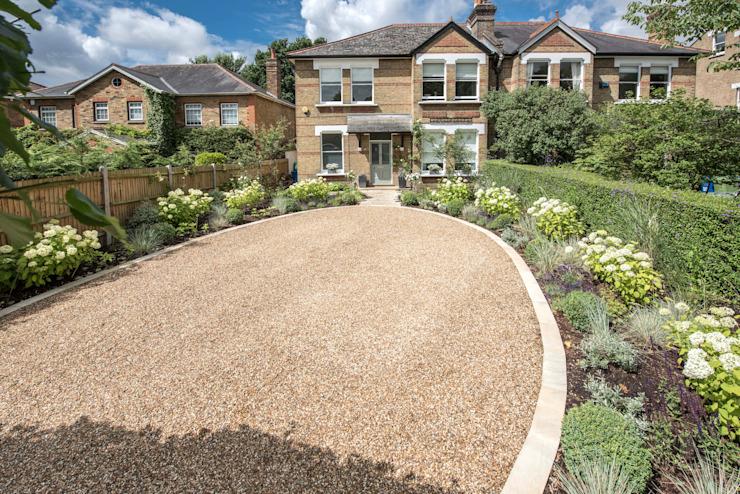Forme et couleur pour un jardin avant spacieux et une allée Kate Eyre Garden Design Jardin moderne