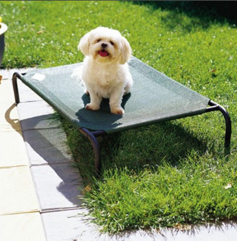 Dog Bed Country style jardin par Garden Furniture Centre Country