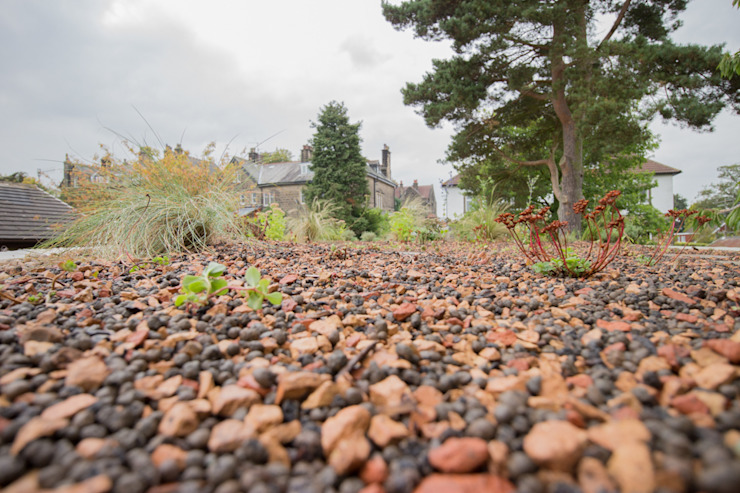 Un jardin moderne avec des matériaux traditionnels Un jardin moderne par Yorkshire Gardens Modern