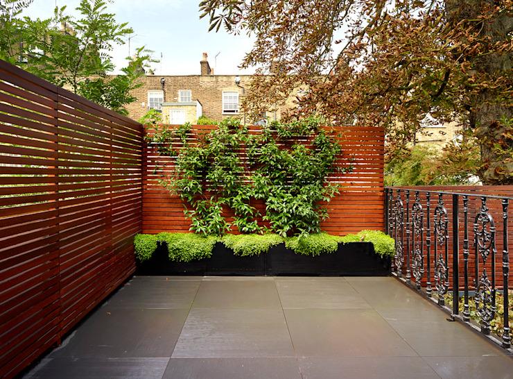 Reflected Glory - Rénovation du parc Holland Jardin moderne de Tyler Mandic Ltd Modern