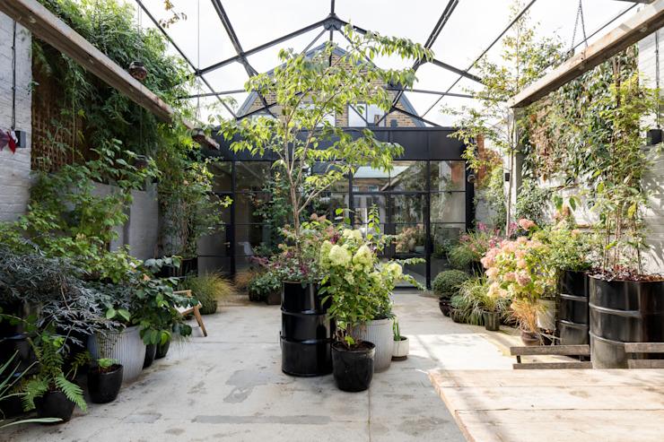 Conversion industrielle d'East Dulwich Jardin de style industriel par Imperfect Interiors Industrial