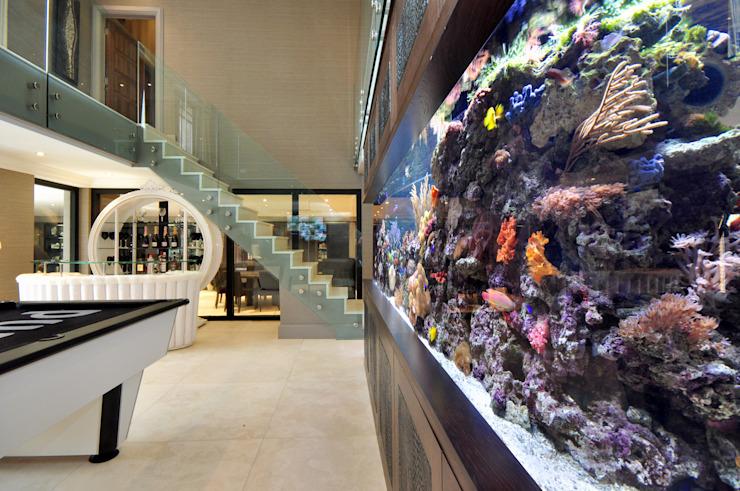 Footballer's Pad Aquarium Salon moderne par Aquarium Architecture Modern