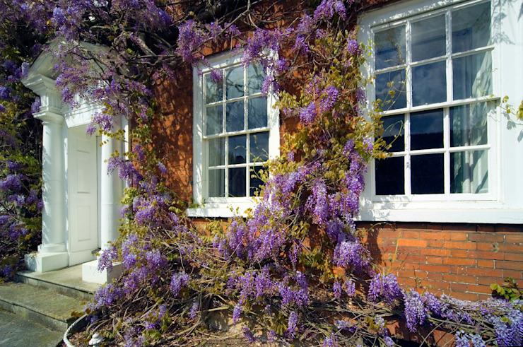 Sash Window Experts Sash Window Experts Portes et fenêtres de style classique