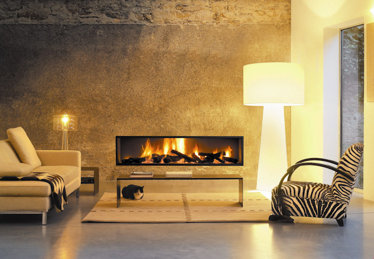 Neofocus Fire homify Living roomFoyers et accessoires