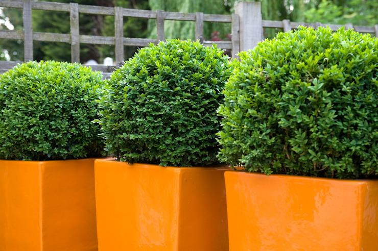 Jardinières et boules en fibre de verre Ornage Earth Designs Jardin moderne