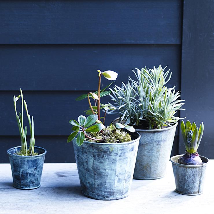 Brent Verdigris Plant Pot Rowen & Wren Garden Pots et vases